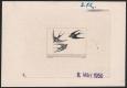 Österreich, 1953, ANK Nr. 968, MICHEL Nr. 984 PH, Flugpostausgabe: Heimische Vogelwelt - 1 Schilling als Probedruck bzw. Phasendruck 2. Phase in schwarz auf ungummiertem Papier mit rückseitigem Stempel der Österr. Staatsdruckerei - SEHR SELTEN !! DB THU